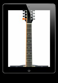 12-String Guitar Tuner Simple
