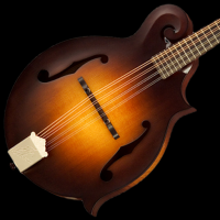 Mandolin Tuner Simple